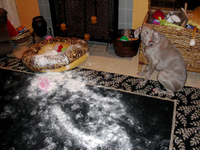 Weim Crime - I didn't do it!